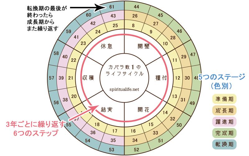 カバラライフサイクル表の見方